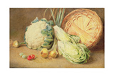 A Still Life of Vegetables Giclee Print by William Henry Hunt