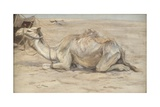 Camel at the Artist's Camp with Bedouins Giclee Print by Edwin John Alexander