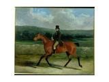 William Ward on Horseback, 1839 Giclee Print by John Frederick Herring Snr