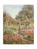 Hollyhocks Giclee Print by Lionel Charles Henley