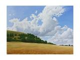 Hambledon Hill Fort, Fields, Clouds, 2010 Giclee Print by Peter Breeden