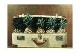 Case of Pineapples, 2000 Giclee Print by Stewart Brown