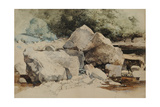 Rocks in a Mountain Stream, 1840-58 Giclee Print by William James Blacklock