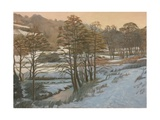 Frozen Iford Valley, 2011 Giclee Print by Peter Breeden