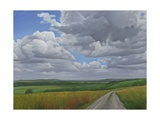 The Wessex Ridgeway Path Above Urchfont 2, 2009 Giclee Print by Peter Breeden