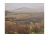 Foggy Landscape Near the Usk Reservoir, 2009 Giclee Print by Peter Breeden