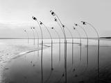 Konferenzen 8 Photographic Print by Jaschi Klein