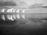 Windpferde 2 Photographic Print by Jaschi Klein