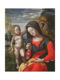 The Madonna Sewing Giclée-tryk af Giovanni Francesco Caroto