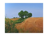 Footpath Trees and Field, 2006 Giclee Print by Peter Breeden