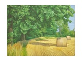 Field Edge Near Iford, 2010 Giclee Print by Peter Breeden