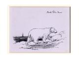 Polar Bear, c.1905 Giclee Print by Edward Adrian Wilson