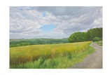 Wessex Ridgeway and Pewsey Downs Beyond, 2011 Giclee Print by Peter Breeden