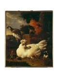 Hen with Chicks Giclee Print by Melchior de Hondecoeter