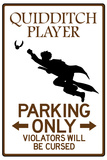 Quidditch Player Parking Sign Posters