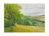Field Corner Aboce Upton Lovell, 2011 Giclee Print by Peter Breeden