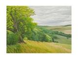 Field Corner Aboce Upton Lovell, 2011 Giclee Print by Peter Breeden