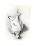 A Ptarmigan, 1898-99 Giclee Print by Edward Adrian Wilson