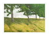 Trees, Dry Grass and Clouds Along a Bridleway, 2011 Giclee Print by Peter Breeden