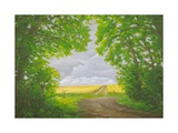 Path Through Woods, Cotley Hill, 2010 Giclee Print by Peter Breeden