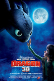 How To Train Your Dragon Movie Poster Photo
