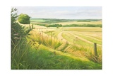 Field Corner in the Deverells, 2011 Giclee Print by Peter Breeden