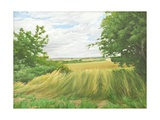 Field Boundary Above Upton Lovell, 2011 Giclee Print by Peter Breeden