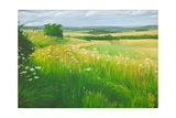 Landscape in the Deverells, Wiltshire, 2010 Giclee Print by Peter Breeden