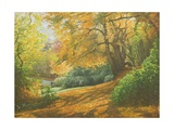 Autumn Woodlands, Kent, 2011 Giclee Print by Peter Breeden