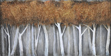 Bronze Birch Prints by Patrick St. Germain