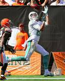 Miami Dolphins - Brian Hartline Photo Photo