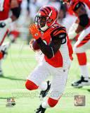 Cincinnati Bengals - Andrew Hawkins Photo Photo
