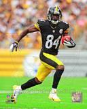 Pittsburgh Steelers - Antonio Brown Photo Photo