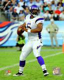Minnesota Vikings - Donovan McNabb Photo Photo