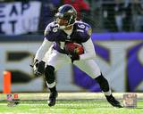 Baltimore Ravens - David Reed Photo Photo