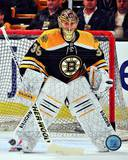Boston Bruins - Anton Khudobin Photo Photo