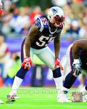 New England Patriots - Brandon Spikes Photo Photo
