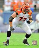 Cincinnati Bengals - Andrew Whitworth Photo Photo