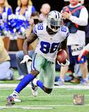 Dallas Cowboys - Dez Bryant Photo Photo