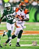 Cincinnati Bengals - Armon Binns Photo Photo