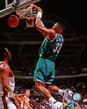 Charlotte Hornets - Alonzo Mourning Photo Photo