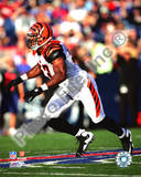 Cincinnati Bengals - Dhani Jones Photo Photo