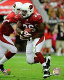 Arizona Cardinals - Beanie Wells Photo Photo
