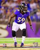 Baltimore Ravens - Dannell Ellerbe Photo Photo