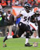 Baltimore Ravens - Arthur Brown Photo Photo