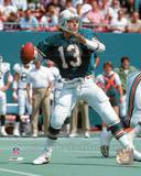 Miami Dolphins - Dan Marino Photo Photo