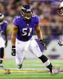 Baltimore Ravens - Daryl Smith Photo Photo