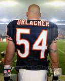 Chicago Bears - Brian Urlacher Photo Photo