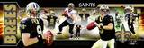 New Orleans Saints - Drew Brees Panoramic Photo Photo
