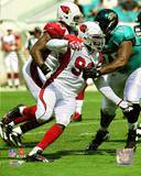 Arizona Cardinals - Bertrand Berry Photo Photo